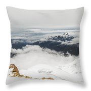 The World Is Mine Throw Pillow