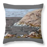 The Yellow Cliff Throw Pillow
