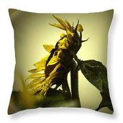 The Yellow Glow Throw Pillow