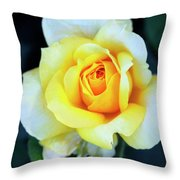 The Yellow Rose Palm Springs Throw Pillow