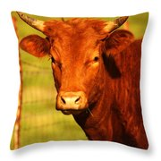 The Young Bull Throw Pillow by Adam Dowling