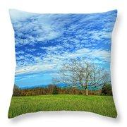 The Zen Meadow Throw Pillow