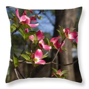 Them Cheery Little Dogwoods Throw Pillow