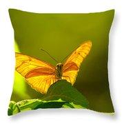 Then A Butterfly Throw Pillow