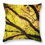 Then Autumn Arrives 03 Throw Pillow