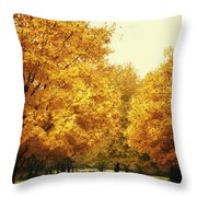 Then The Morning Comes 07 Throw Pillow