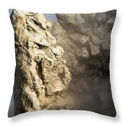 Theodore Roosevelt At Yellowstone Throw Pillow