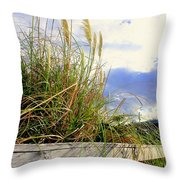 Therapeutic View Throw Pillow