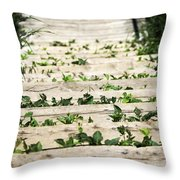 There Is No Stopping Nature Throw Pillow