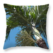 There Is Power In Me Throw Pillow