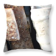 There's Life On Rust Throw Pillow