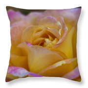There's Nothing Like The Beauty Of A Rose  Throw Pillow