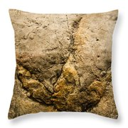 Theropod Dinosaur Footprint Throw Pillow