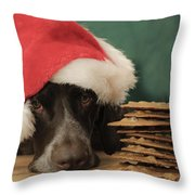 These Are All For Santa Throw Pillow