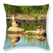 These Ducks Rock Throw Pillow