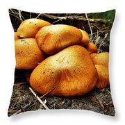 These Look Almost Animal  Throw Pillow
