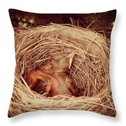 They've Hatched Throw Pillow