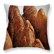 Thick Fins Throw Pillow