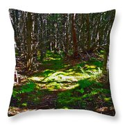 Thicket-like Woods And Spongy Moss Near Lobster Cove In Gros Mor Throw Pillow