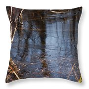 Thin Ice Of A New Day Throw Pillow