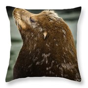 Things Are Looking Up-sealion Throw Pillow