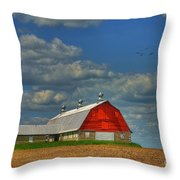Things Unnoticed At The Time Throw Pillow