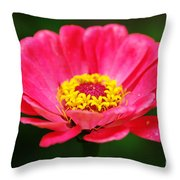 Think Pink Throw Pillow