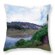 Thinking Springtime Throw Pillow