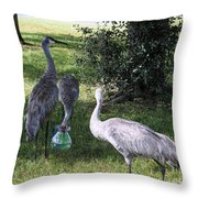 Thirsty Cranes Throw Pillow