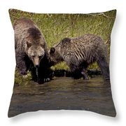 Thirsty Grizzlies  #3418 Throw Pillow