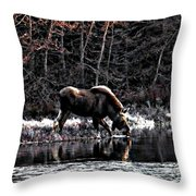 Thirsty Moose Impressionistic Digital Painting Throw Pillow