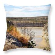 Thirsty Rio Grande Throw Pillow