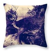 Thirteen Ways  Throw Pillow