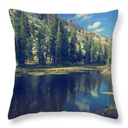 This Beautiful Solitude Throw Pillow