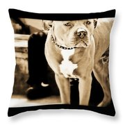 This Dog Has A Soul Throw Pillow