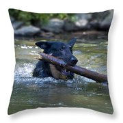This Dog Loves To Play Fetch Throw Pillow