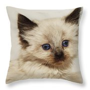 This Girl Just Wants To Be Loved Throw Pillow