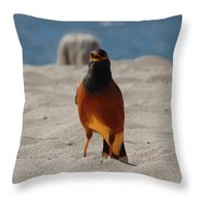 This Is My Beach. Get Outta Here. Throw Pillow