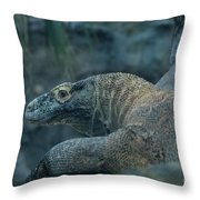 This Is My Bestside 2 Throw Pillow