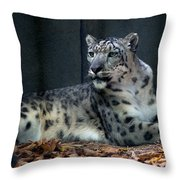 This Is My Corner Throw Pillow