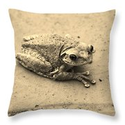 This Old Frog Throw Pillow