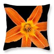 This Orange Lily Throw Pillow