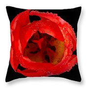 This Red Tulip Throw Pillow