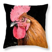 this Rooster Means Business Throw Pillow