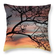 This Side Of The Night Throw Pillow