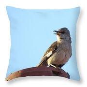 This Spring's Mockingbird Throw Pillow