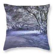 This Way To Fairy Glen Throw Pillow