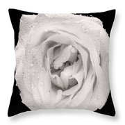 This White Rose Throw Pillow