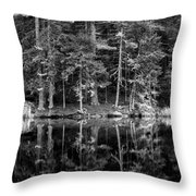 This World Of Ours Throw Pillow