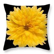 This Yellow Chrysanthemum Throw Pillow